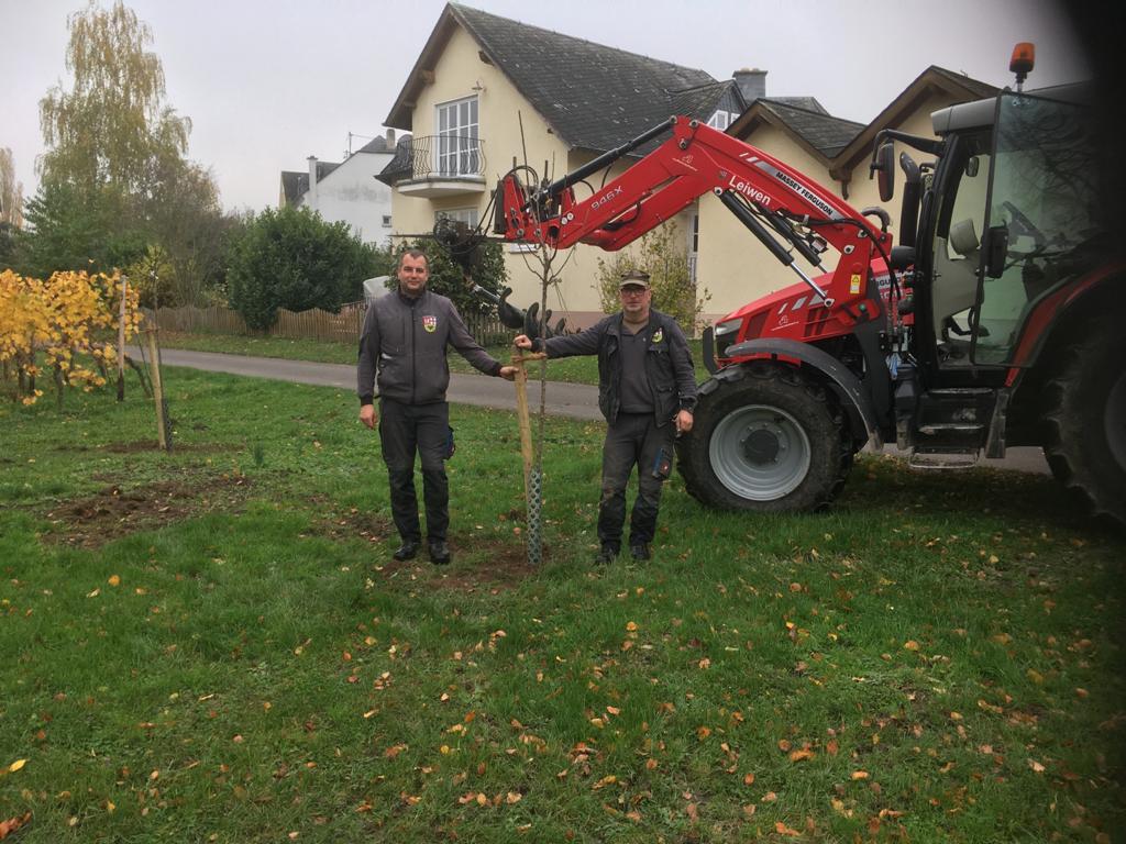 Gemeindearbeiter beim pflanzen von Bäumen